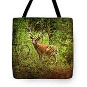 Buck In Full Velvet Tote Bag