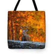 Buck In The Fall 01 Tote Bag