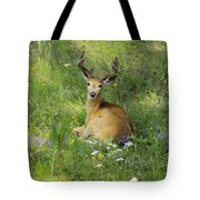 Buck What Are You Looking At Tote Bag