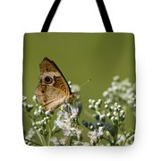 Buckeye Butterfly And Lesser Snakeroot Wildflowers Tote Bag