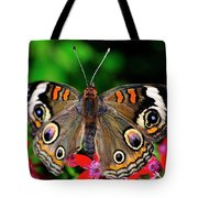 Buckeye Buttterfly Tote Bag