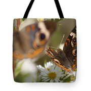 Buckeye With Eyes Tote Bag