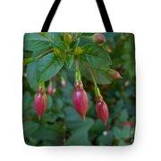 Budding Fuchsia Tote Bag
