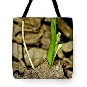 Budding Lilly Tote Bag