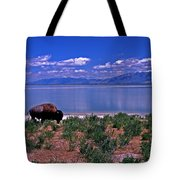 Buffalo And The Great Salt Lake Tote Bag