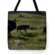 Buffalo Bison Roaming In Custer State Park Sd.-1 Tote Bag