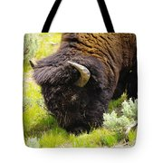 Buffalo Grazing Tote Bag