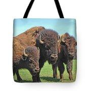 Buffalo Group II Tote Bag