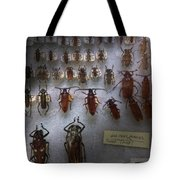 Bug Collector - So What's Bugging You Tote Bag by Mike Savad