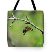 Bug Eat Bug Tote Bag