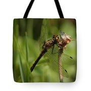 Bug Eyed Dragon Fly Tote Bag
