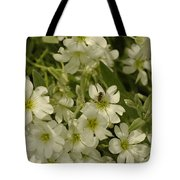 Bug On White Blooms Tote Bag