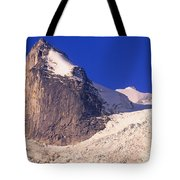 Bugaboo Spire Tote Bag by Bob Christopher