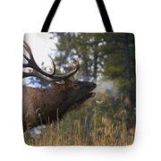 Bull Elk Bugling Jasper National Park Tote Bag by Carson Ganci