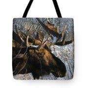 Bull In The Brush Tote Bag