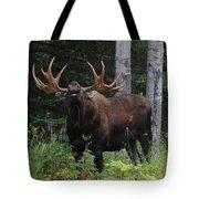 Bull Moose Flehmen Tote Bag