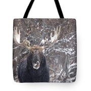 Bull Moose In Winter Tote Bag
