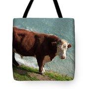 Bull On The Edge Tote Bag