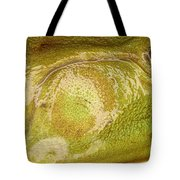 Bullfrog Ear Tote Bag by Ted Kinsman