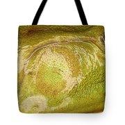 Bullfrog Ear Tote Bag by Ted Kinsman