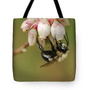 Bumble Bee And Blueberry Blossoms Tote Bag