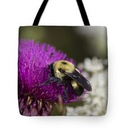 Bumble Bee And Bristle Thistle Tote Bag