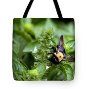 Bumble Bee Buzz Tote Bag
