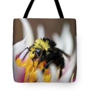 Bumblebee Attacking Flower Tote Bag