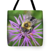 Bumblebee On A Purple Flower Tote Bag