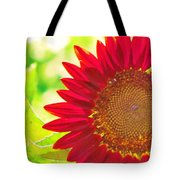 Burgundy Sunflower Tote Bag