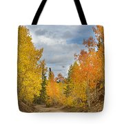 Burning Orange And Gold Autumn Aspens Back Country Colorado Road Tote Bag