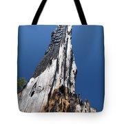 Burnt Tree V Tote Bag