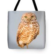 Burrowing Owl V Tote Bag