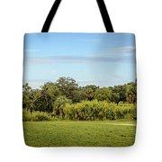 Busch Gardens Landscape Tote Bag