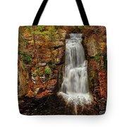 Bushkill Main Falls Tote Bag