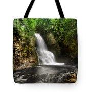 Bushkill Waterfalls Tote Bag