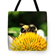Busy Bee Collecting On Echinacea Pow Wow Tote Bag