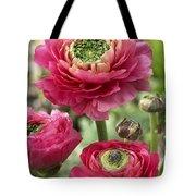 Buttercup Ranunculus Sp Mirabelle Vert Tote Bag