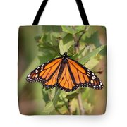Butterfly - Monarch - Resting Tote Bag
