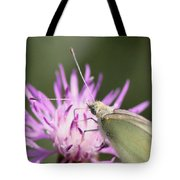 Butterfly - Plain And Simple Tote Bag
