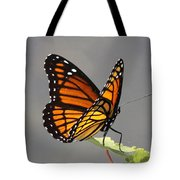 Butterfly - Sitting On The Green Tote Bag