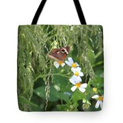 Butterfly 15 Tote Bag