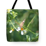 Butterfly 22 Tote Bag