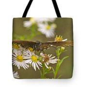 Butterfly 3319 Tote Bag