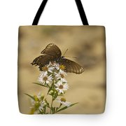 Butterfly 3322 Tote Bag