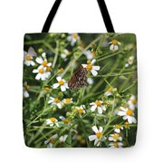 Butterfly 35 Tote Bag
