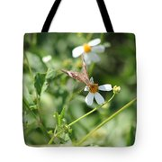 Butterfly 8 Tote Bag