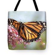 Butterfly Beauty - Monarch IIi Tote Bag