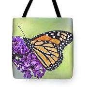 Butterfly Beauty-monarch Tote Bag