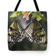 Butterfly Duo Tote Bag